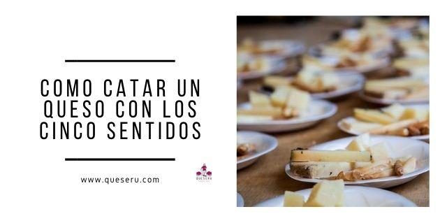 Catar un queso con los cinco sentidos