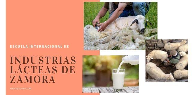 Industrias lácteas de zamora-2