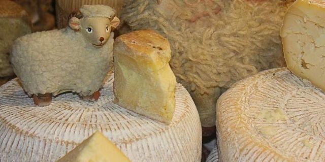 quesos de oveja de españa